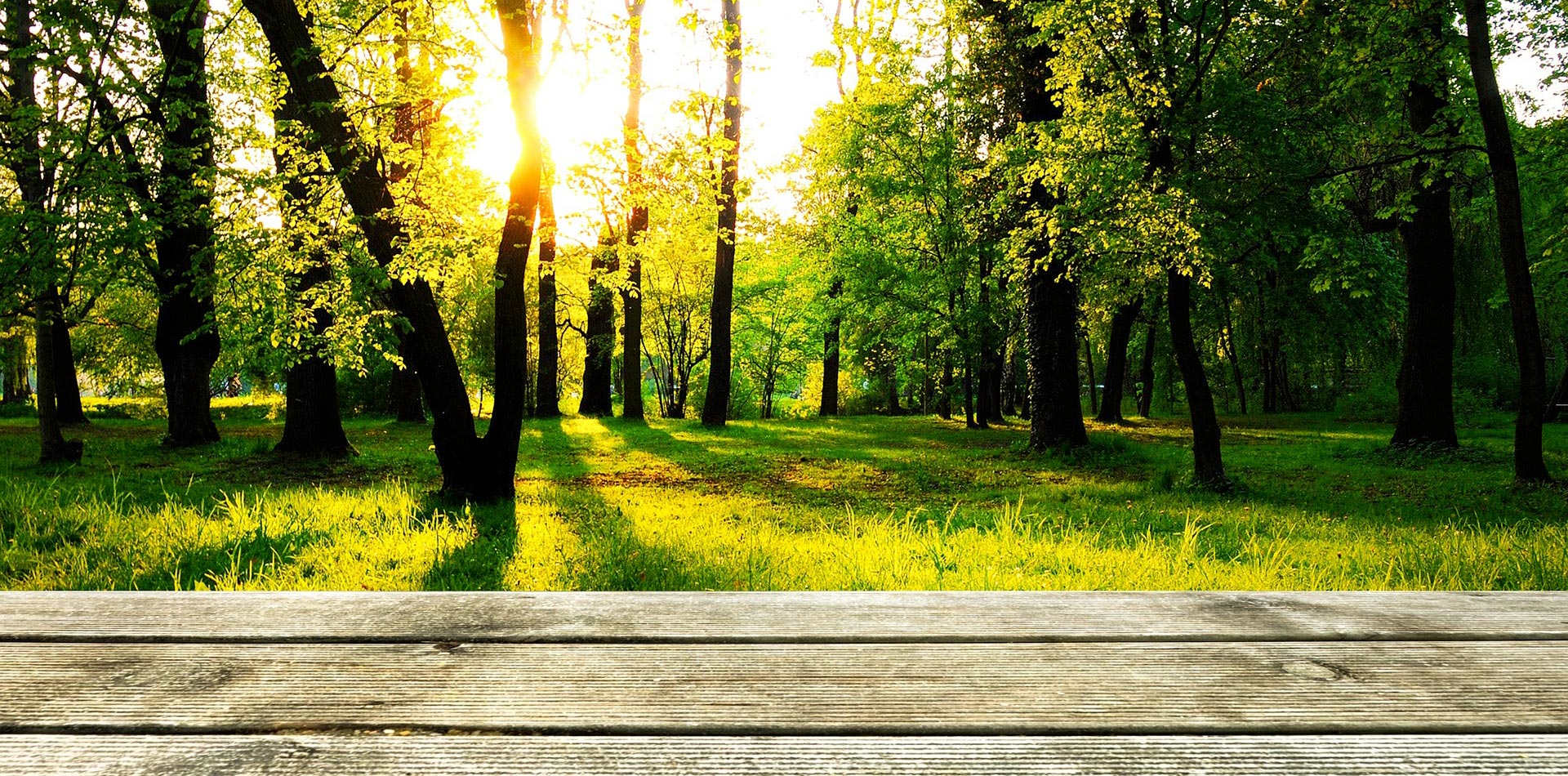 natura sostenibilità